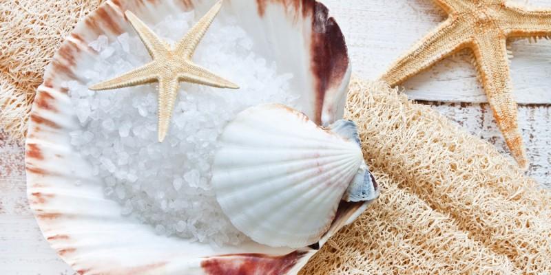 Meersalz und Muscheln
