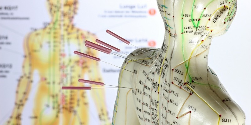 Modell mit Akupunkturpunkten und Meridianen
